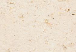 Crema Fossile
